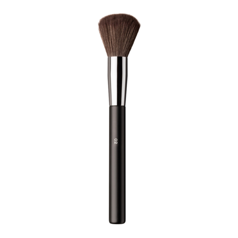 POWDER BRUSH PRO 02